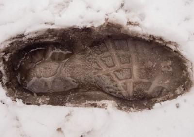 One Foot Forwared - Photo Credit Zach Pierce