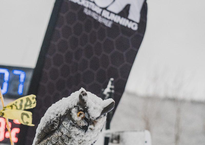 Snowy Olw Photo - Credit Fresh Tracks Media