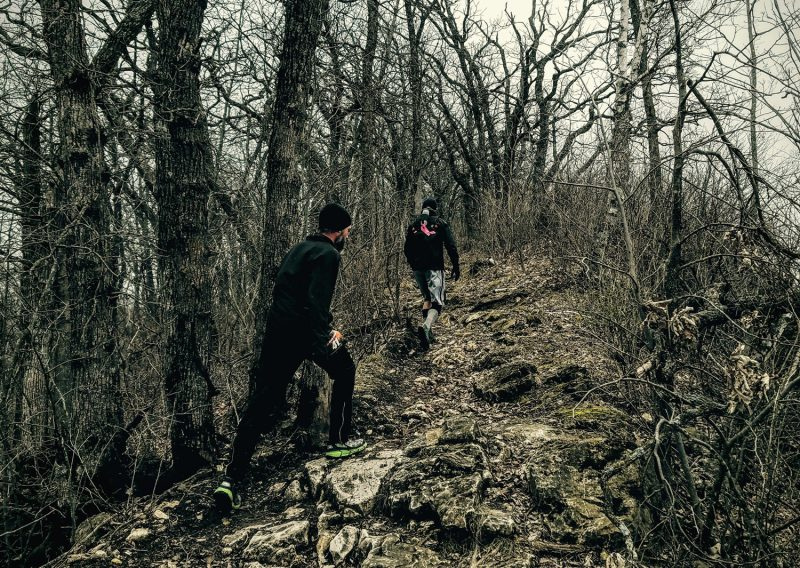 The Woods Are Lovely Dark and Deep - Photo Credit John Storkamp