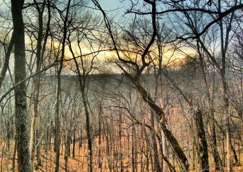 Zumbro Sunrise - Photo Credit Matt Wilson