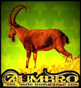 zumbro-100-orange-ibex